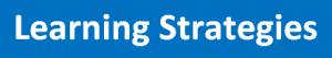 Strategic Instruction Model, SIM Strategies