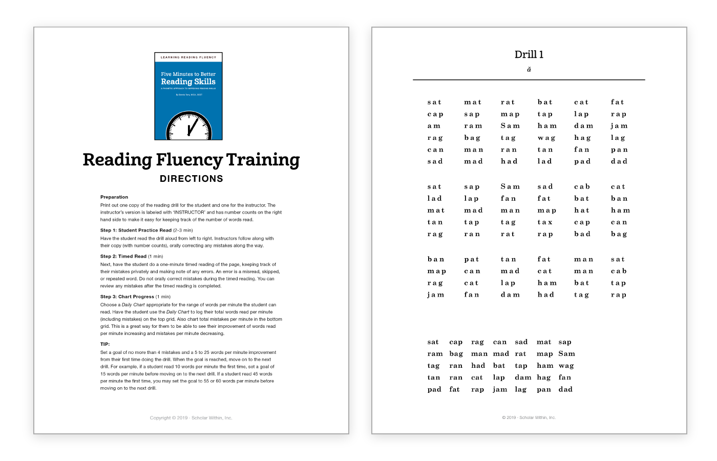 Reading Fluency Activity - Free Download - Training Drill