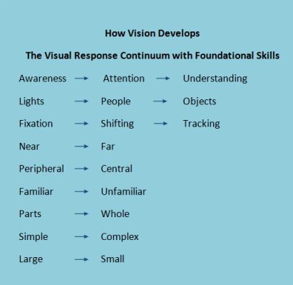 Steps to Visual Processing V-2