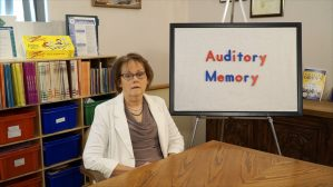 Auditory Perception: Auditory Memory